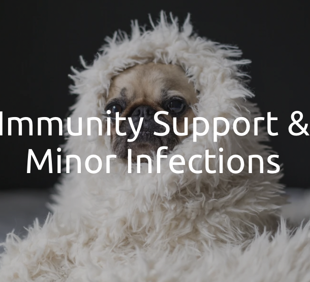 Immunity Support & Minor Infections