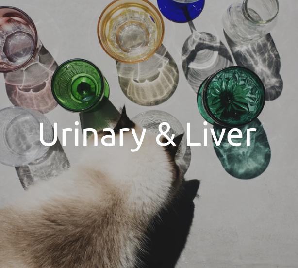 Urinary & Liver