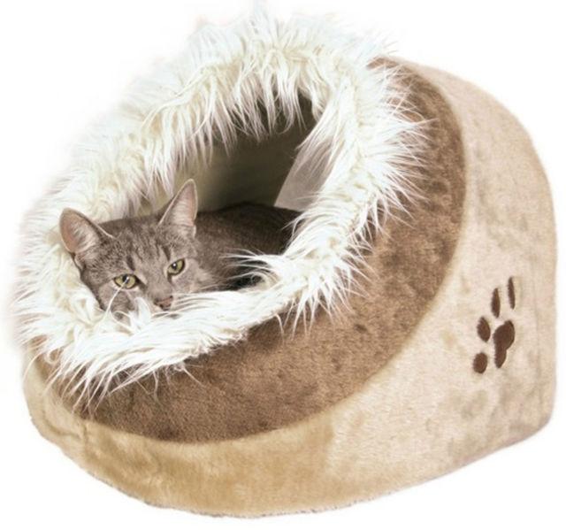Kitten Beds