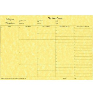 5 Generation Pedigree Form Certificate Printed on Quality Paper Puppy Breeder x 6