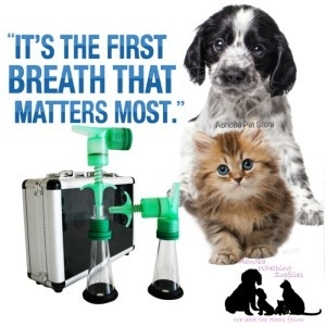 One Puff Puppy & Kitten Aspirator / Resuscitator Kit – Stimulates First Breath