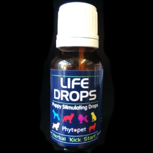 Phytopet puppy life drops 10ml