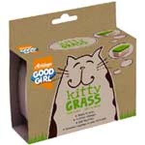 Good Girl Kitty Grass