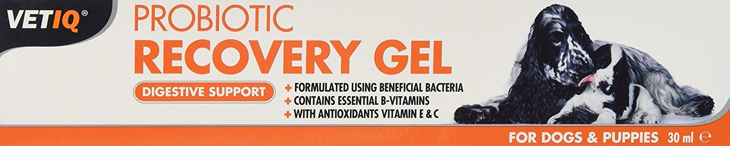 VetIQ Probiotic Recovery Gel for Dogs & Puppies x 30 Ml