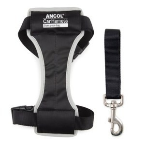 Ancol Dog Car Harness Range – Does Your Dog Travel?