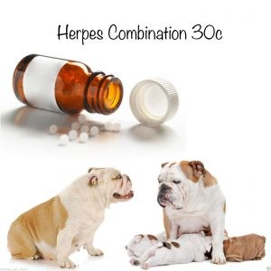 Phytopet Herpes Combination 30c (Homeopathic Nosodes)