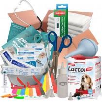 ABNOBAS FULL Whelping Kit Beaphar Lactol Puppy Dog Milk Feeding Bottle 3225