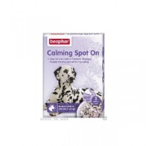 CALMING SPOT ON DOG