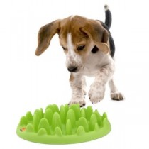 GREEN Slow Dog Feeder – Mini