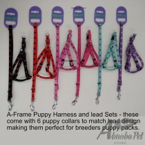 6 Puppy Whelping Collars & 6 matching lead and harness sets (3 Hearts & 3 Stars Design)