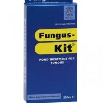 Nishikoi Fungus-Kit