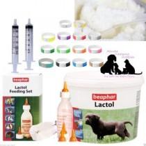 Beaphar Lactol Puppy Milk 250g & Feeding set