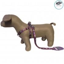 Extra Small / Toy Dog / Puppy Hearts Purple & Aqua Lead & Harness Set 28-38cm